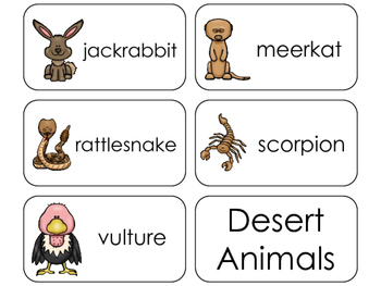 11 Desert Animals Beginning Stages Flashcards. Preschool-1st Grade