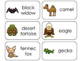 11 Desert Animals Beginning Stages Flashcards. Preschool-1