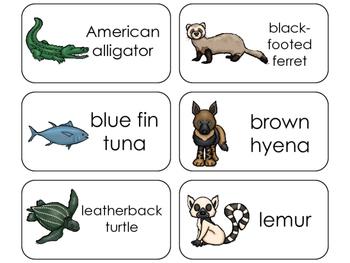 11 Endangered Animals Beginning Stages Flashcards. Preschool-1st Grade