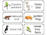 11 Extinct Animals Printable Flashcards. Preschool-3rd Grade