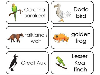 11 Extinct Animals Printable Flashcards. Preschool-3rd Grade