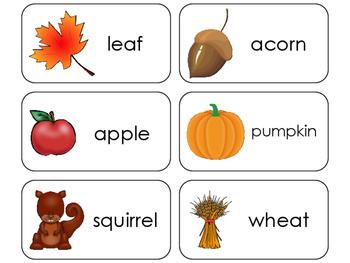 11 Fall Beginning Stages Flashcards. Preschool-1st Grade