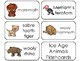 11 Ice Age Animals Printable Flashcards. Preschool-3rd Grade