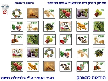 11 Memory Game for Sha'vou-ot-Shivat Haminim photo to photo Hebrew..