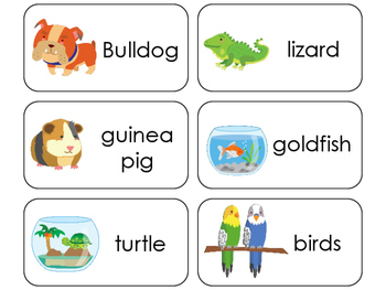 11 Pets Beginning Stages Flashcards. Preschool-1st Grade