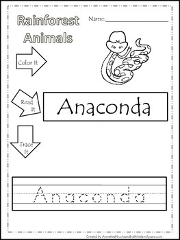 11 Rainforest Animal themed printable preschool worksheets. Color, Read,  Trace