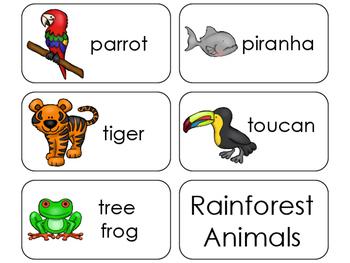 11 Rainforest Animals Beginning Stages Flashcards. Preschool-1st Grade