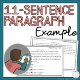 11-Sentence Paragraph Example