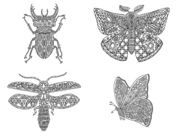 12 Bugs & Insects Zentangle Coloring Pages
