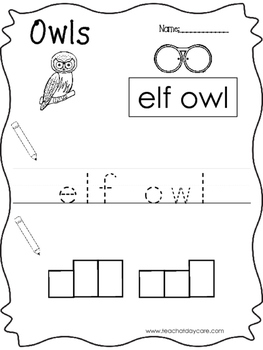 12 Color, Read, Trace, and Box Write Owls Worksheets. Preschool-KD
