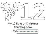 12 Days of Christmas Number Practice