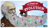 12 Days of Evolution Worksheet
