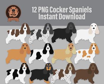 12 Hand Drawn English Cocker Spaniel Illustrations - Sporting Dog Clipart