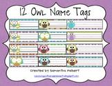 12 Owl Desk Name Tags