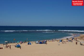 12 Sensei-tional Day at the Beach Photos