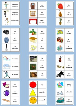 12 Spanish Vocabulary Picture and Word Card Sets (Grouped by Theme, 500 cards)