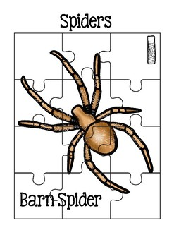 12 Spider Jigsaw Puzzles