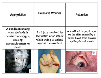 12 Vocabulary Activity Death Unit for Forensics