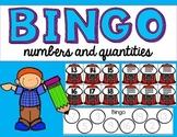 Interactive Bingo- Numbers and Quantities in tens frames