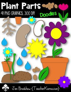Plant Parts Clip Art ~ Commercial Use Graphics ~ Spring