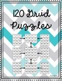 120 Grid Puzzles