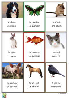 126 Flashcards Animals in French and French/English