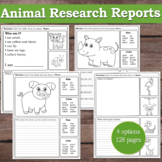 Animal Research Reports /  Animal Riddles, Projects (Zoo Farm Ocean Animals)