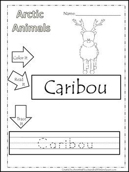 13 Arctic Animal Themed Printable Preschool Worksheets Color Read Trace Wor 1796777 on Kindergarten Worksheets Snowy Owl