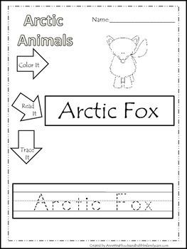 13 Arctic Animal themed printable preschool worksheets.  C