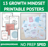 13 COLOR Growth Mindset Posters