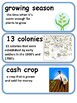 13 Colonies / American Revolution Vocabulary Cards
