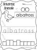 13 Color, Read, Trace, and Box Write Antarctic Animals Worksheets. Preschool-KDG