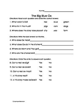 1.3 Story Comprehension Questions