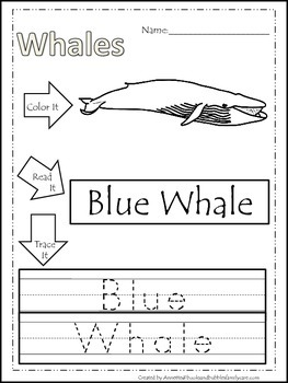 13 Whale themed printable preschool worksheets. Color, Read, Trace