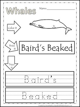 13 Whale themed printable preschool worksheets. Color, Rea