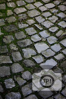 136 - TEXTURES - Cobbelstone, stone  [By Just Photos!]