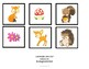 Errorless 14 Picture Mat Boards for matching