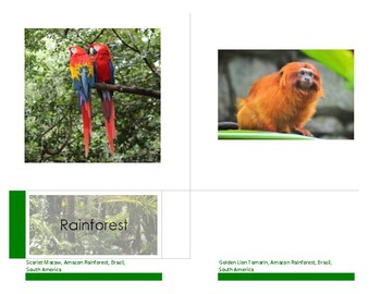 Animal Habitats and Biomes:  14 cm Montessori Classification / Sorting Cards