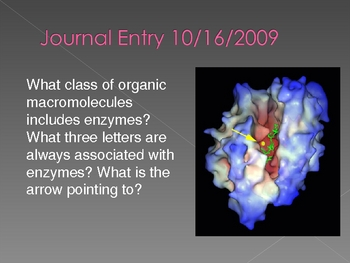 140+ Daily Journal Entries for High School Biology