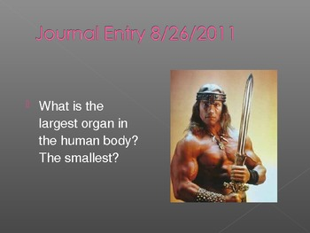 145+ Journal Entries: Human Anatomy and Physiology