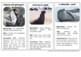 15 Animals of Antarctica - Montessori Nomenclature and Information Cards