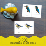 Birds! 15 Different Types 3-part cards Montessori
