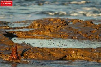 15 Sensei-tional Beach Feature Photos Set 1
