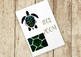 15 Space Turtle Clip Art Set, Separate PNG Files, High Resolution.