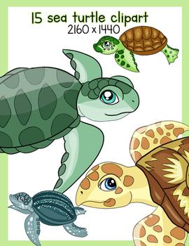 15 sea turtle clipart