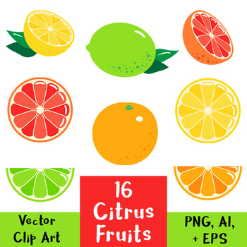 16 Citrus Fruits Vector Clipart | Lemon, Lime, Orange, Grapefruit, Food, Summer