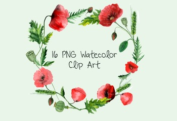 16 Watercolor Poppies Clip Art