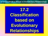 Animals PPT; 17.2- 17.3 Classification of Animals; Science; Taxonomy