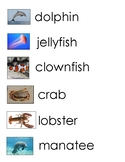 18 Ocean Sea Life Animals Word Wall Unlined Lined