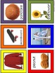 108 Beautiful Photos of Compound Words - Spelling Vocabula